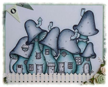 Spongehouses n
